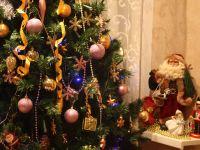 Новогодний праздник в Доме-музее А.Толстого, 30 декабря 2015г., Москва