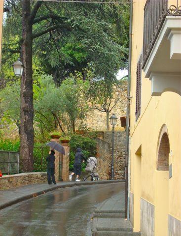 деревья в Италии