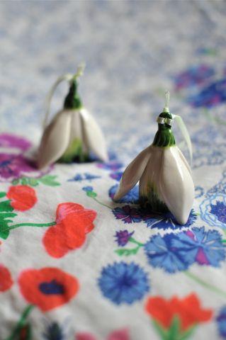 Цветы-колокольчики, Чехия